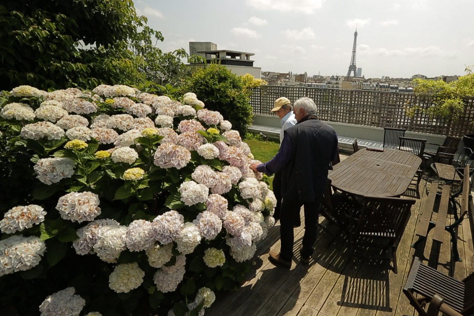 Passion jardins l2 films - Pierre alexandre risser ...